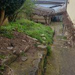PHOTO-2021-04-22-10-26-56 2