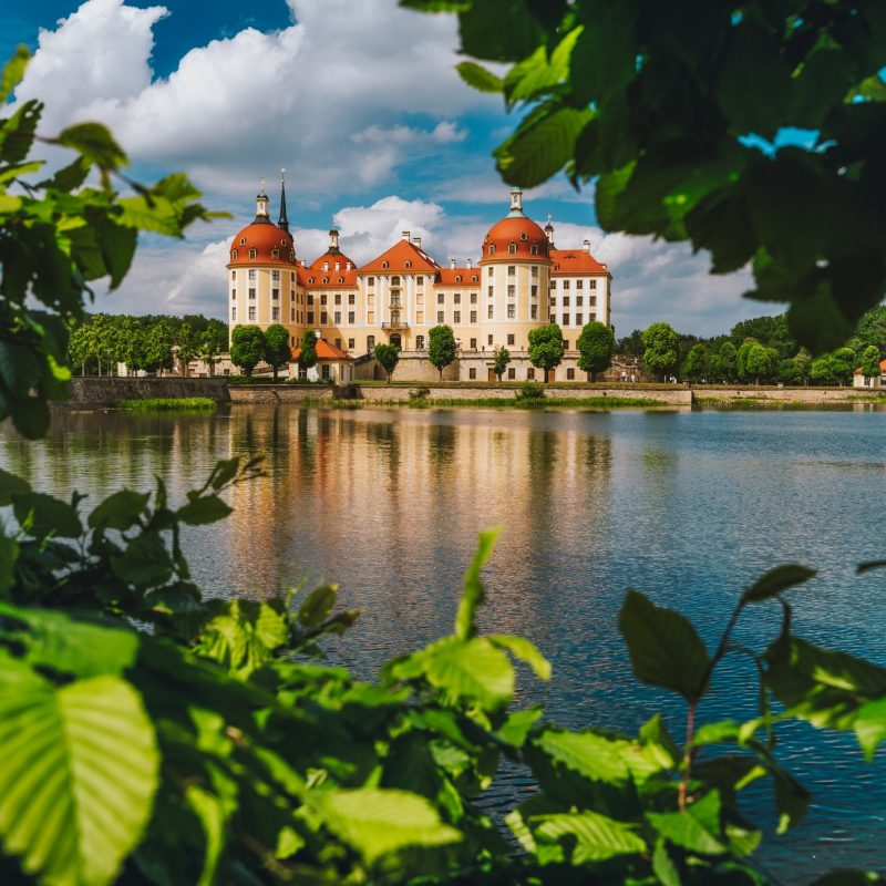 Castle Moritzburg in Saxony near Dresden. Framed by spring lush foliage leaves in foreground with
